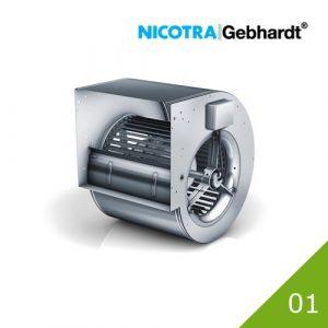 01 Nicotra DD