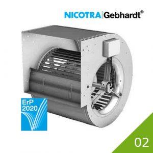 02 Nicotra DDM
