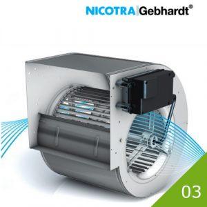 03 Nicotra DDMP